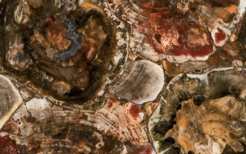 Caesarstone,Concetto, 8330 Petrified Wood