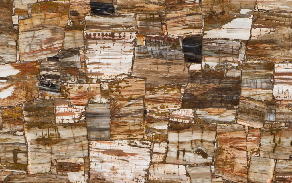 Caesarstone,Concetto,8331 Petrified Wood Classic